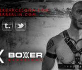 Boxer Barcelona